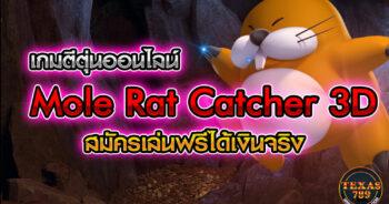 เกมตีตุ่นออนไลน์ Mole Rat Catcher 3D สมัครเล่นฟรีได้เงินจริง